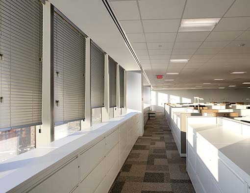 Custom Blinds for Light Control in Homes, Corporate Offices, and Conference Rooms in Jacksonville, Florida (FL)